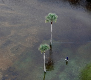 Bird's Eye View: South Carolina Submerged