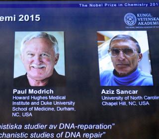 DNA Researchers Paul Modrich, Aziz Sancar and Tomas Lindahl Win Nobel Prize in Chemistry