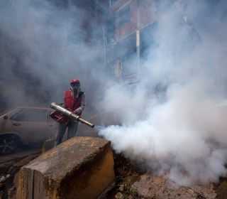 What Is the Zika Virus? Your Questions Answered