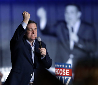 Indiana Primary: Ted Cruz Fights Hard to Remain in GOP Race