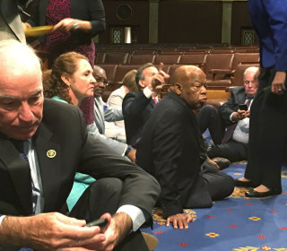 'Spirit of History': House Democrats Hold Sit-In on Gun Control
