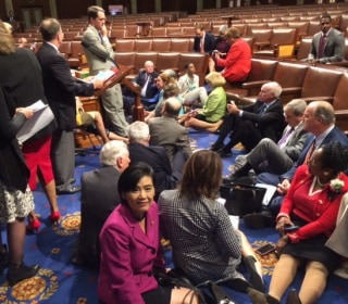 Asian-American Advocates Speak Out in Favor of Gun Control As Dems Hold Sit-In