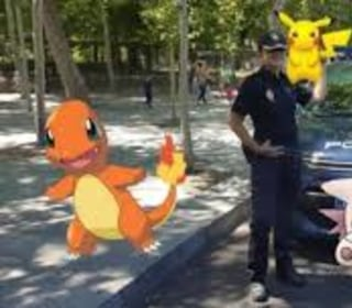 Pokemon No Go? Why Driving and Lizards Don't Always Go Well Together