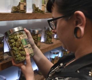 These Nine States Will Vote on Legalizing Recreational and Medical Marijuana