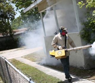 New Zika Case Found in Florida's St. Petersburg