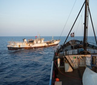 Japan Whalers Say Deal with Sea Shepherd Will End Ocean Clashes