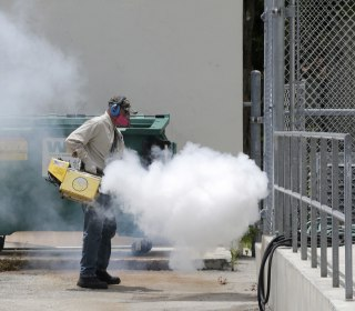 Expect More U.S. Zika Virus Cases, Experts Say