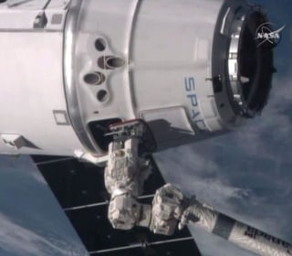 Splashdown! Space Mice Hitch a Ride Back to Earth on SpaceX Dragon