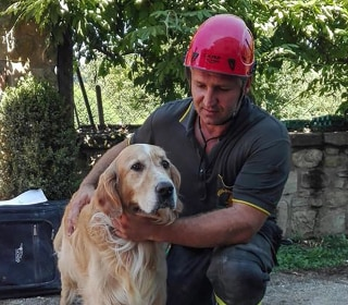 Barking Dog Found Alive in Rubble 9 Days After Italy Earthquake