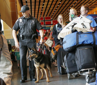 Bomb Dogs Failed Dozens of Tests at 10 Large U.S. Airports