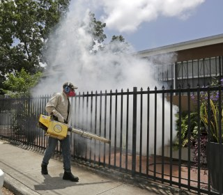 CDC Widens South Florida Zika Virus Zone – Sort Of