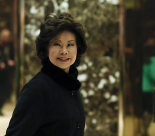 Elaine Chao's Cabinet Nomination Brings 'Pride' for Some in U.S., Overseas