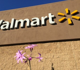Wal-Mart to Settle Lawsuit Over Benefits for Same-Sex Spouses