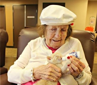 Dementia Patients Find Joy in Bottle-Feeding Tiny Kittens