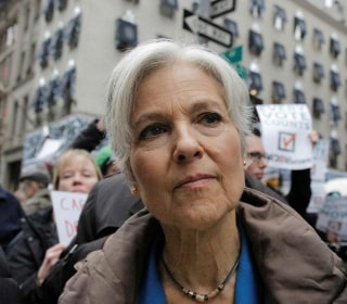 Michigan Supreme Court Denies Jill Stein Recount Appeal