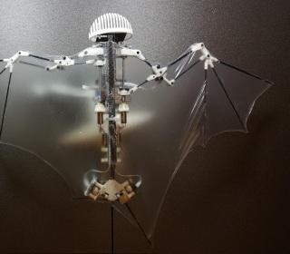 Bat-Bot is a Drone That Flies Like a Bat