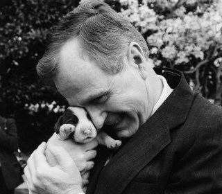 First Pets: Dogs, Cats and a Raccoon Among Past Presidential Best Friends