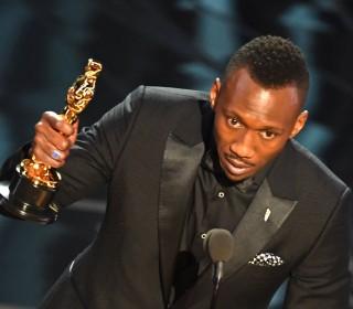 Diversity Wins at Oscars as Jabs at President Donald Trump Unite Academy