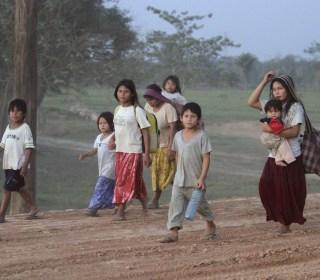 Amazon Tsimane People Have the Healthiest Hearts