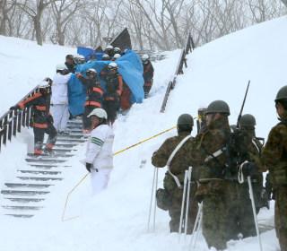 Eight Killed as Avalanche Hits Japan Ski Resort