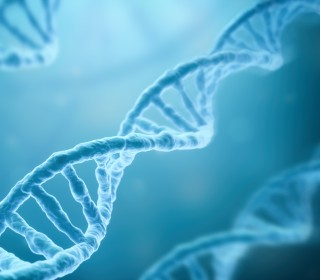 Why Your Genes May Be Influencing Your Salary