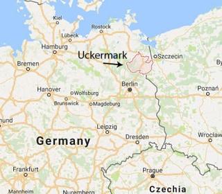 Teenager Detained on Suspicion of Plotting Berlin Terror Attack