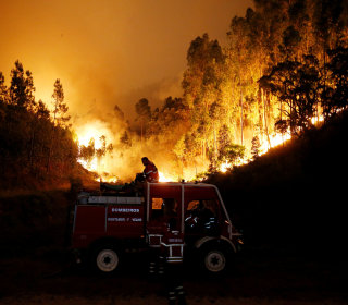 Portugal Forest Fires: 61 Dead; PM Calls Disaster a 'Tragedy'