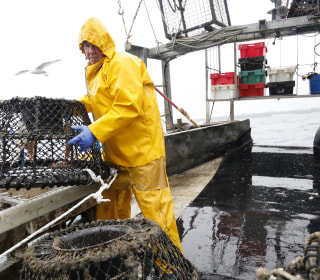 Brexit Britain: The Island Nation's Fishermen and the Battle With the EU