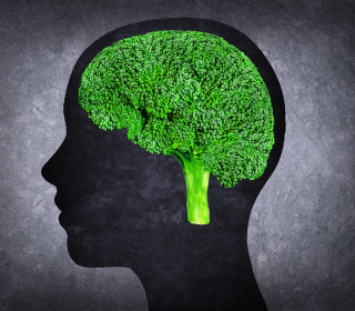 What Happens to Your Brain When You Go on a Diet