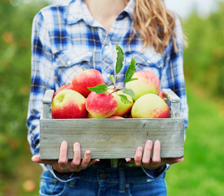 5 Science-Backed Reasons to Go Apple Picking This Weekend