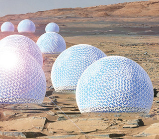 Will Mars colonists live in these 'Redwood Forest' habitats?