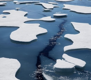 Arctic tourism is potential threat to environment as ice melts