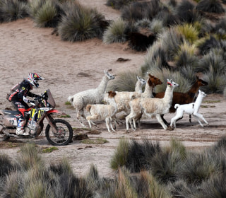 Dakar Rally: Rugged racers cross desert and dune in South America