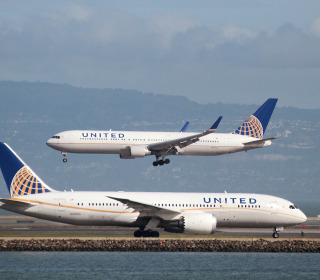 Dog dies after United flight attendant puts it in overhead bin
