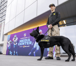 Super Bowl city was home to dozens of ISIS, other terror suspects