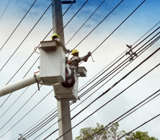 Puerto Rico: Single fallen tree on power line leaves 900K without power