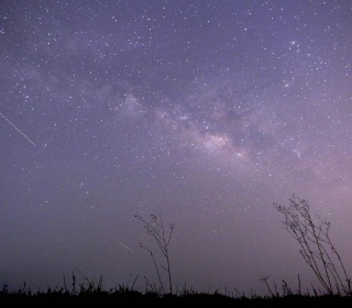 The Lyrid meteor shower is back. Here's how to see the shooting stars