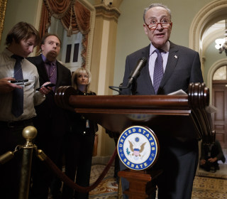 Schumer demands Trump 'stop bullying, harassing and lying' about Florida vote count