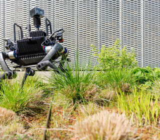 These robotic dogs take fetch to a whole new level