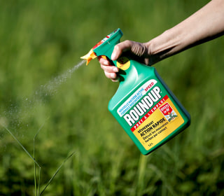 California jury hits Monsanto with $2 billion judgment in cancer lawsuit