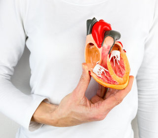 Heart disease deaths in middle-aged women on the rise