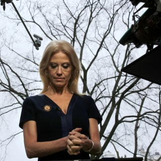 Kellyanne Conway: WH Spokesman Gave 'Alternative Facts' on Inauguration Crowd