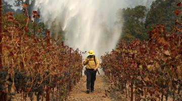 Extreme Weather, Climate Change Costing Taxpayers Billions