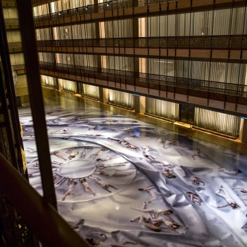 Image: Art installation at the David H. Koch Theater at Lincoln Center