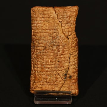 Image: Ark Tablet