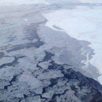 Image: arctic sea ice