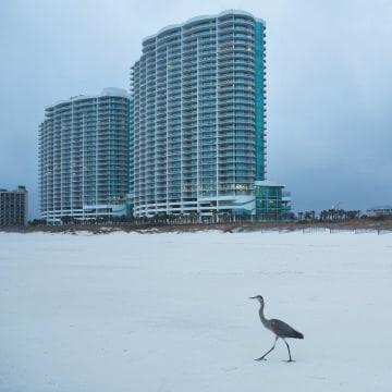 Image: The Turquoise Place condominium buildings rise above Orange Beach, Ala.