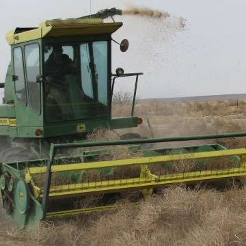 Specially outfitted heavy machinery has helped Crowley County, Colorado keep the drought-fueled tumbleweeds at bay.