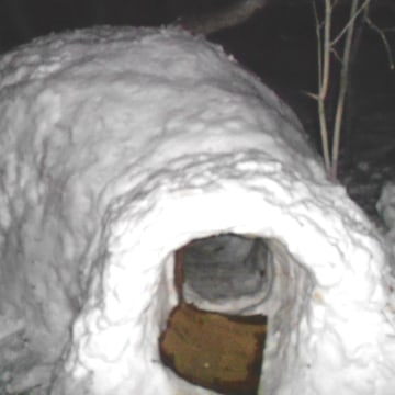 An igloo found on campus at the University of Utah, where students suspected of using it as a marijuana den were found