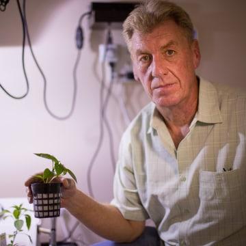 Image: Medical Marijuana Tampa instructor Dan Downing